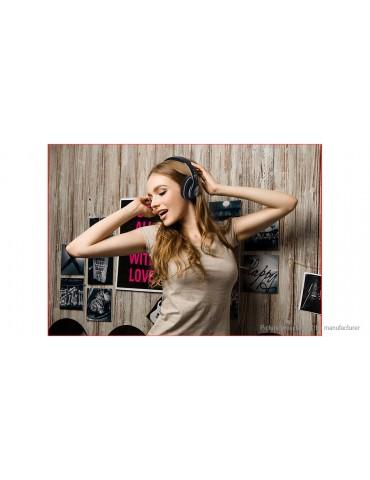 V33 Foldable Bluetooth V5.0 Heavy Bass Stereo Headset